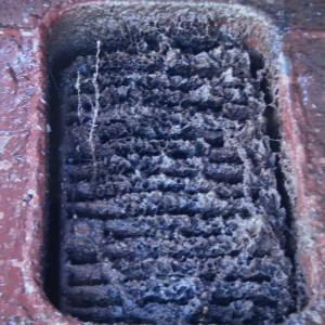 电解防污效果
